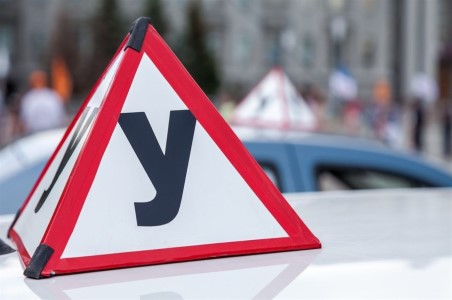 Как проверить лицензию автошколы и заключение ГИБДД?